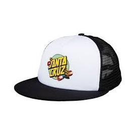 SANTA CRUZ CAP SUMMER OF 76 MESH BACK